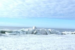 Куда съездить на природу на выходные? Весна на побережье Финского залива